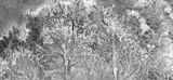 abstrakcyjny naturalizm, czarno-białe zdjęcie, abstrakcyjna fotografia krajobrazów pustyni Afryki z powietrza, widok z lotu ptaka, współczesna sztuka fotograficzna, - 270172255