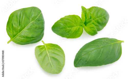 Fresh basil on white background Fototapet