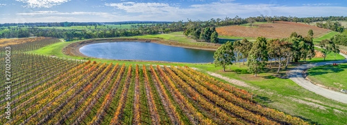 Photo Aerial panorama of vineyard and pond on bright sunny day in fall