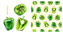 Green Bell Pepper Isolated On White Background. Watercolor Seamless Pattern Of Vegetables, Raw Green Pepper. Hand-drawn Healthy Food.