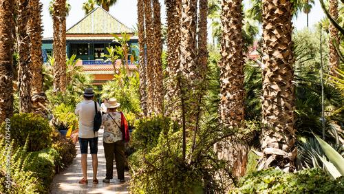 Jardine Majorelle In Marrakesh, Morocco, Africa, Yves Saint Laurent magic garden, flowers cactus trees background