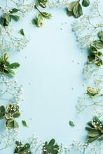 Small White Gypsophila Flowers...