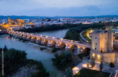 Poster Pays d Europe Night aerial view of Cordoba