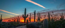 AZ Desert Landscape Image At S...