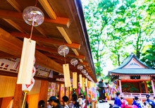 Many Japanese Wind Bells In Summer