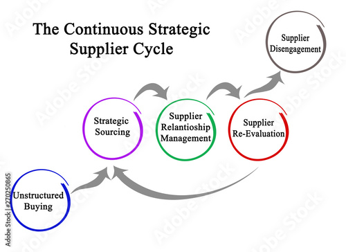 Fotomural  Components of Continuous Strategic Supplier Cycle..