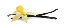 Aromatic Vanilla Sticks And Flower On White Background