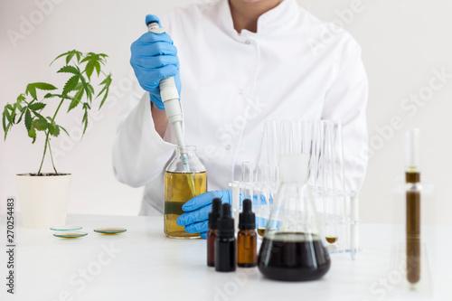 Valokuva  Watering cannabis plants in the laboratory.