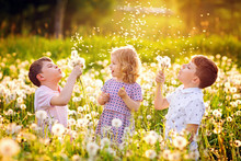 Two Kids Boys And Little Baby Girl Blowing On A Dandelion Flowers On The Nature In The Summer. Happy Healthy Toddler And School Children With Blowballs, Having Fun. Family Of Three Love, Together