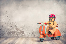 Retro Teddy Bear Toy In Red Helmet With Goggles Sitting On Old Children's Pedal Orange Scooter From 60s Front Loft Concrete Wall Background. Kid Racer Concept. Vintage Style Filtered Photo