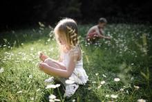 Children Plucking Flowers In F...