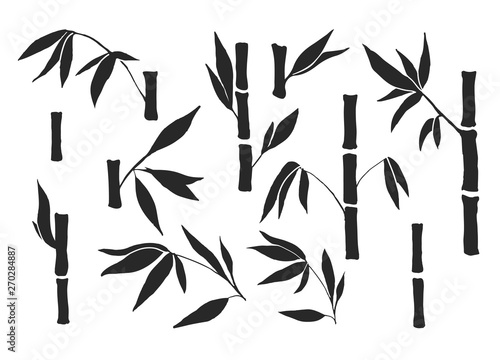 Drawing bamboo parts and section of branches and leaves isolated on the white background. Bamboo plant silhouettes and shapes for design.