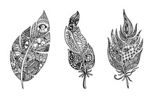 Hand Drawn Stylized Feathers Vector Collection. Set Of Doodle Tribal Feathers. Cute Zentangle Feather For Your Design. Elements For Greeting Card And Postcard, Henna And Tattoo