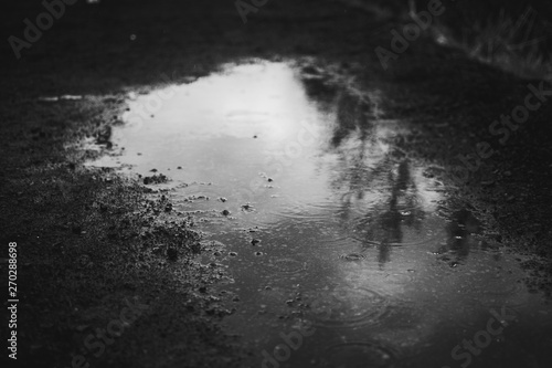 Carta da parati Tiny raindrops on a transparent water of a puddle and Icelandic black sand