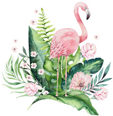 Fototapeta Do biura Hand drawn watercolor tropical birds set of flamingo with leaves. Exotic rose bird illustrations, jungle tree leaf, weddihg invitation. Perfect for fabric design. Aloha collection.
