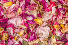 Dried Rose Petals Background.