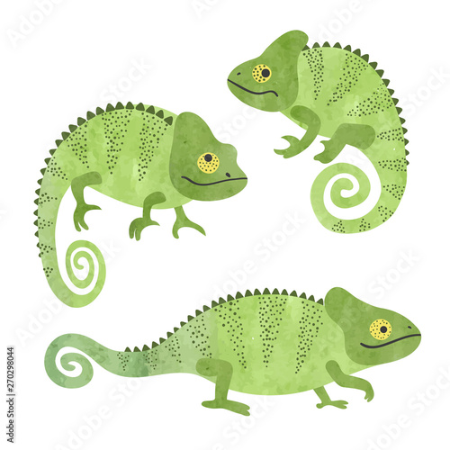 Fotografía Set of funny watercolor chameleons. Vector lizards.
