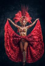 Talented Joyful Can Can Dancer...