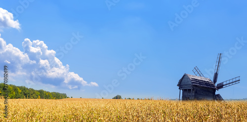Old windmill. Panorama of Agriculture Wheat crop field summer landscape