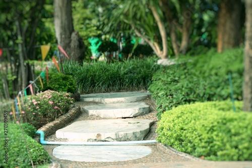 Cadres-photo bureau Jardin Stone path in green grass