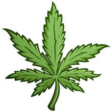 Green Marijuana Weed Leaf Cartoon Drawing