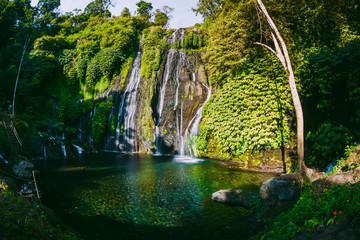 Amazing waterfall with tropical plants in Bali