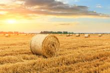 Round Straw Bales On Farmland