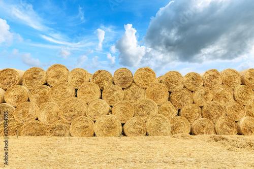 Fototapeta Straw bales on farmland with blue cloudy sky