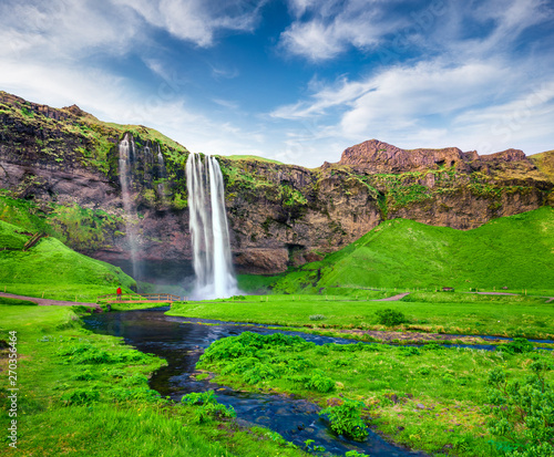 Photo sur Toile Vert Beautiful morning view of Seljalandfoss Waterfall on Seljalandsa river in summer. Colorful summer scene of Iceland, Europe. Beauty of nature concept background.