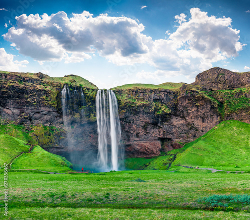 Photo sur Toile Vert Bright morning view of Seljalandfoss Waterfall on Seljalandsa river in summer. Colorful summer scene of Iceland, Europe. Beauty of nature concept background.