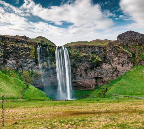 Photo sur Toile Vert Picturesque morning view of Seljalandfoss Waterfall on Seljalandsa river