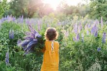 Adorable Curly Little Girl Wearing Mustard Linen Dress With Llupine Flowers Bouquet