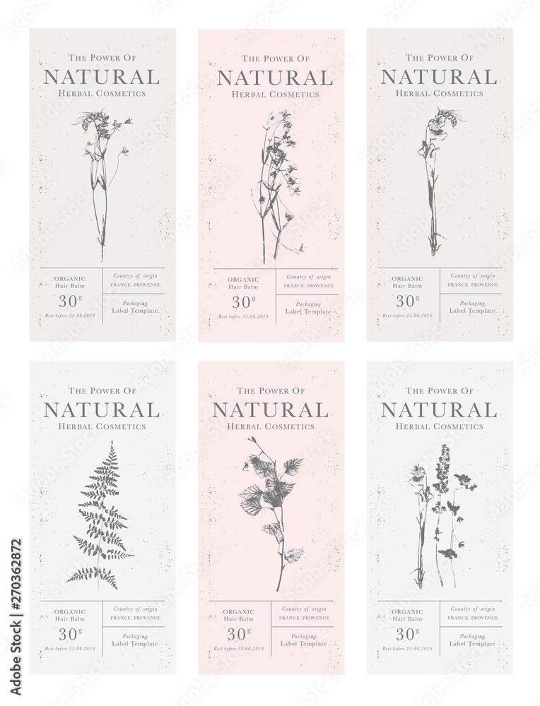 Fototapeta Set of customizable vintage label of Natural organic herbal products.