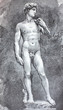 canvas print picture - The Statue of David by Michelangelo in the vintage book Michelangelo by S.M. Bryliant, St. Petersburg, 1891
