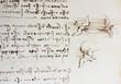 canvas print picture - Bird, dove, mechanism of flight in the vintage book Manuscripts of Leonardo da Vinci, Codex on the Flight of Birds by T. Sabachnikoff, Paris, 1893