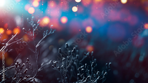 Poster Prune Floral background in neon color. Background macro grass, blurred bokeh, neon light. Nature