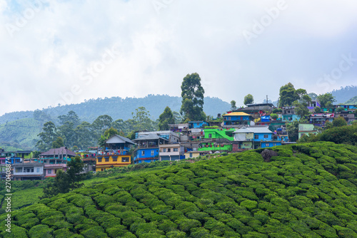 Beautiful village and tea plantations in Munnar, Kerala, India.