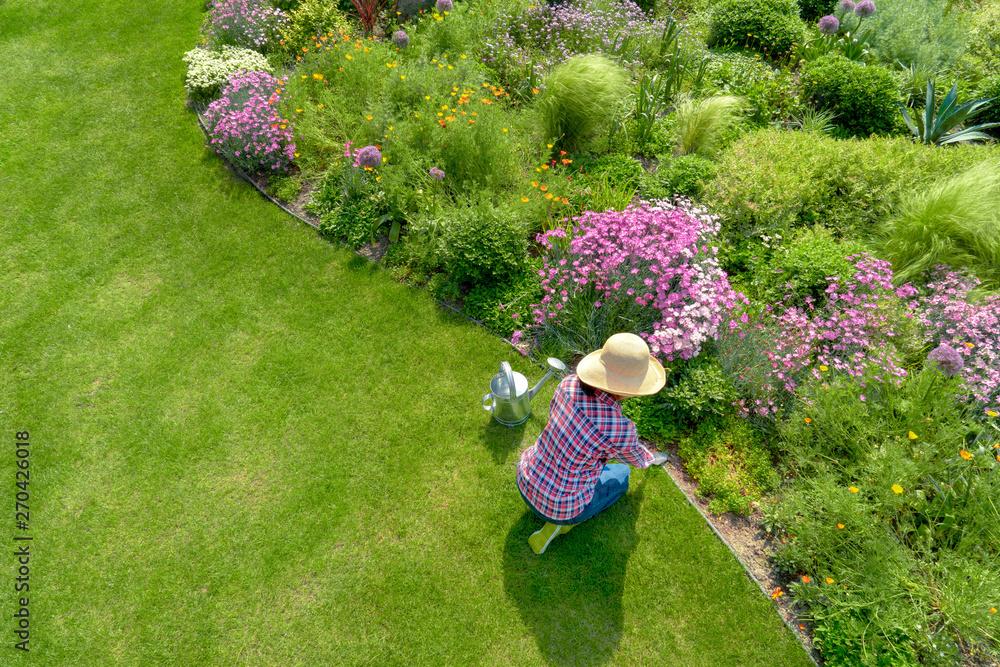 Fototapeta Young female planting flower in garden