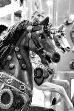 Carousel Horse In Black And White With Bokeh