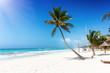 Der tropische Strand von Tulum, Riviera Maya, Mexiko, mit türkisem Ozean und Koskonuss Palmen