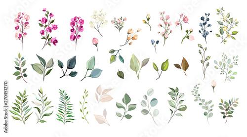 Fotomural  Set of floral elements