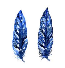 Image Of Feathers Of Ecozotic ...