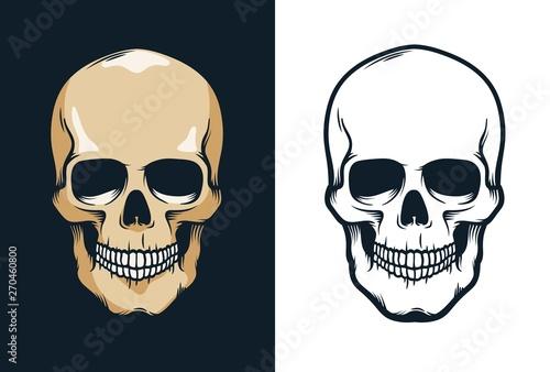 Skull in retro vintage style. Vector illustration. Canvas Print