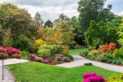 Photo sur Toile Jardin Beautiful Garden with blooming trees during spring time, Wales, UK