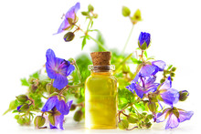 Meadow Geranium Essential Oil In  Beautiful Bottle On White Background