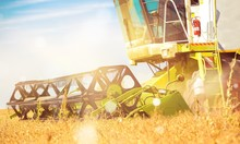 Combine Machine With Cab Harvesting Oats On Farm Field