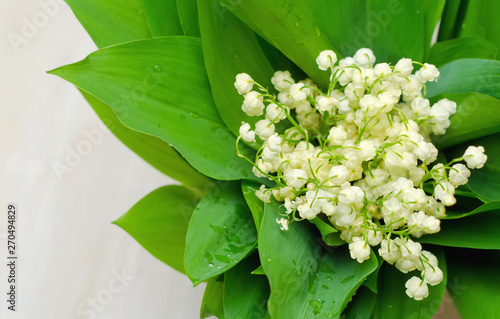 Wall Murals Lily of the valley lilies of the valley and leaves on a wooden white background selective focus