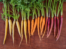 Freshly Picked Rainbow Carrots With Leafy Tops Arranged By Color On Wooden Cutting Board