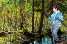 An Experienced Researcher Studies The Properties Of Water From A Forest River