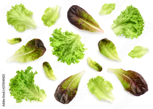 Obraz na płótnie Fresh lettuce leaves isolated on white background